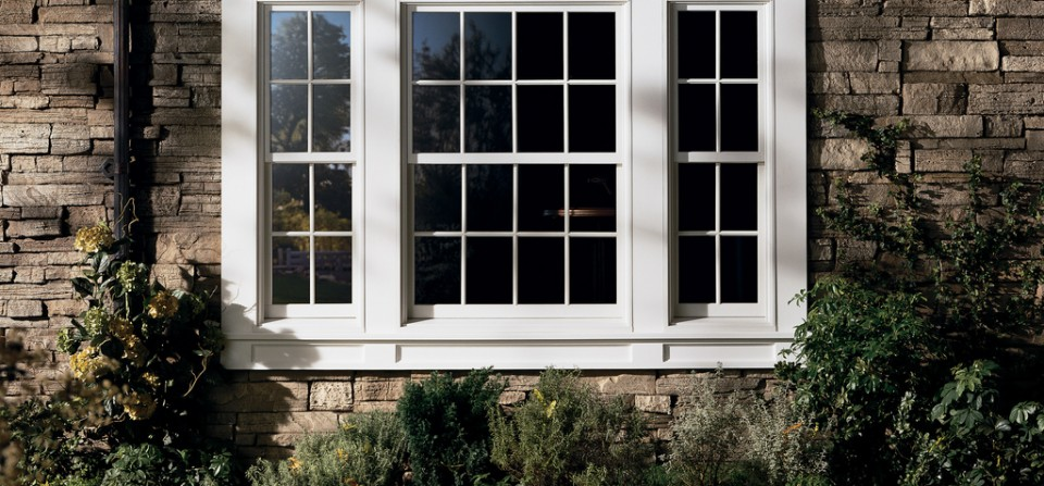 trwindowservices, denver, windows