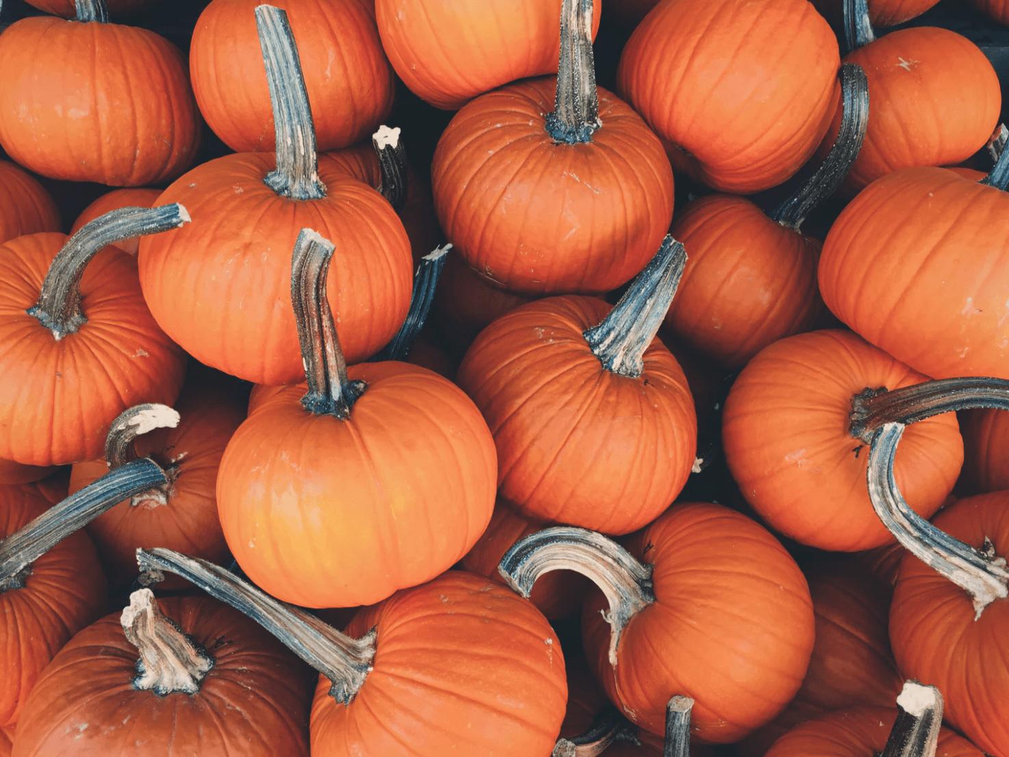 pumpkin carving shortcuts